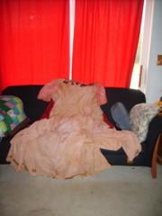 Not Tia Dalma Dress
